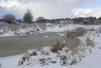 Willowburn Pasture and a frozen flood