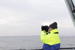 North Sea, Northumberland, Cetaceans, Harbour Porpoise, Minke Whale